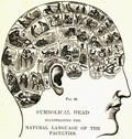 Words Can Change Your Brain | Psychology Today