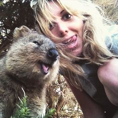 Quokkas are the most AWESOME selfie masters! Click the link to see more!