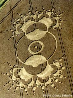 The Arecibo/Chibolton crop circles are the holy grail of crop circles. This is direct contact from humans to aliens, and back. On Aug the face was found printed into formation right in the. Crop Circles, Aliens And Ufos, Ancient Aliens, Circle Art, Circle Design, Arecibo Message, Nazca Lines, Deco Nature, Alien Art