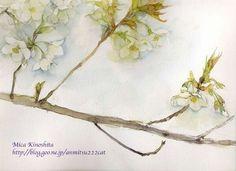 木下美香による日々のスケッチ