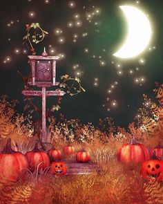 Find More Background Information about 200cm*150cm photography background Grass moon stars  halloween backdrop vinyl backdrop photography WSJ 012,High Quality backdrop wedding,China backdrop support Suppliers, Cheap backdrop kit from Marry wang on Aliexpress.com