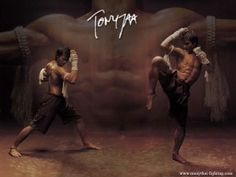 Tony Jaa has been hailed as the new Jet Li of martial arts and the new Jackie Chan of stunts and perhaps the new Bruce Lee. Tony Jaa, Sports Wallpapers, Movie Wallpapers, Kung Fu, Full Contact, Muay Thai Martial Arts, Tai Chi Qigong, Art Of Fighting, Martial Artists