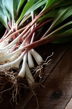 All about ramps!