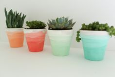 Succulent Planters A DIY tutorial that shows you how to create these ombre succulent pots. Perfect for your home or for a party! A DIY tutorial that shows you how to create these ombre succulent pots. Perfect for your home or for a party! Succulent Planter Diy, Succulent Centerpieces, Diy Planters, Succulents Diy, Flower Planters, Cactus Flower, Hanging Planters, Wedding Centerpieces, Painted Plant Pots