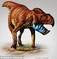 Two new horned dinosaurs have been named based on fossils collected from Alberta, Canada. The new species, Unescopceratops koppelhusae and Gryphoceratops morrisoni, are from the Leptoceratopsidae family of horned dinosaurs. Prehistoric World, Prehistoric Creatures, Dinosaur Fossils, Dinosaur Art, Reptiles, Mammals, Chuck Norris, Dinosaur Pictures, Extinct Animals