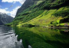 Норвегия....