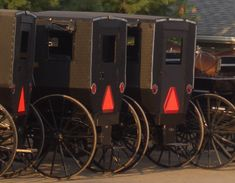 Amish Ecyclopedia examines a divers range of topics including Amish life, culture, and belief