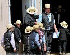 Amish at sale