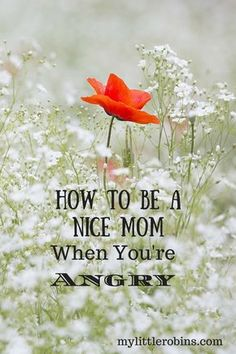 how to be a nice mom when you're angry