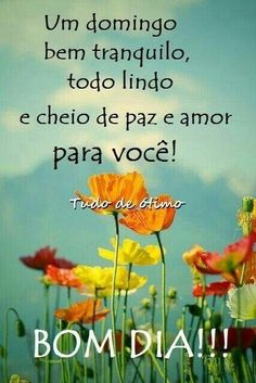Bom dia, Domingo Day For Night, Flirting Quotes, Good Morning Quotes, Live Long, Portuguese Quotes, Gifs, Sweet Hearts, Slot Machine, Crepes