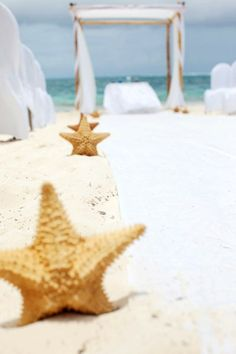 Beach Wedding Decor Starfish Burlap Chair Bridal Shower 3 Pcs