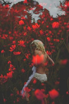 Aries in nature - http://simplysunsigns.com/