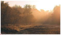 Fog of Light III | Flickr - Photo Sharing!