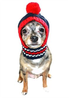 New England Patirots NFL Official Licensed Team Crown Rib Knit Ski Hat  for Dogs in color Navy/Red