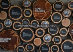 wood products: ceiling to floor