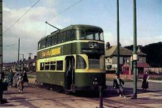 Bowring Park terminus. Courthey Avenue, Liverpool.