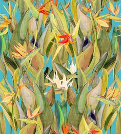 Birds of Paradise on Blue Wallpaper – Voutsa