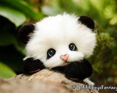 Panda May-Lun ,(made to order) Teddy Bear Stuffed Animal Bear Soft Toys Artist Teddy Bears - Tragen Cute Panda Baby, Baby Panda Bears, Baby Animals Super Cute, Cute Wild Animals, Baby Animals Pictures, Cute Stuffed Animals, Cute Little Animals, Cute Animal Pictures, Cute Funny Animals