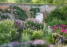 The Rose Garden at Mottisfont Abbey (National Trust). Source: The Telegraph Photography: Andrew Butler