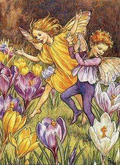 Cicely Barker Flower Fairies Mounted Print  The Crocus Fairy  - Great Gift
