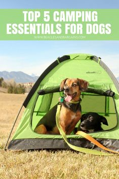 Top 5 Camping Essentials for Dogs - See what you should be along on your next outdoor adventure with your pets Camping And Hiking, Camping With Kids, Camping Gear, Outdoor Camping, Camping Hacks, Stealth Camping, Camping Cabins, Camping Stuff, Tent Camping