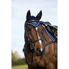 Micklem Competition Bridle | Dover Saddlery