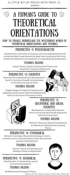 Lifespan development infographic for explaining theoretical orientations and related theories. Intro To Psychology, Psychology Student, Counselling Theories, Social Work Theories, Freud Theory, Psych Major, Mental Health Counseling, Developmental Psychology, School Counselor