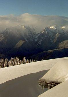 [Live Stream] Hurricane Ridge (Olympic National Park) Webcam - Snow, Rain and Sun