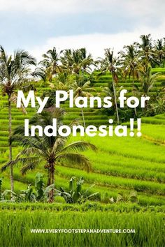 I'm Going to Indonesia!!