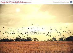 Golden Landscape Photograph - Mollys Muses Etsy #fpoe