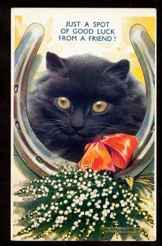 Black cat and horseshoe.