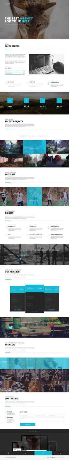 Salty - A creative digital agency & portfolio template on Behance