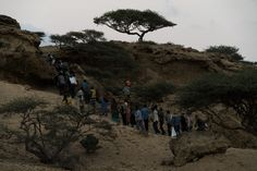 As the sun sets, migrants make their way over a hill to meet the boats...