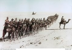 Caption: Australians of the Imperial Camel Corps near Rafa during the war against the Ottoman Empire. Middle Eastern theatre of World War I.Egypt, 26 January Paget platePhoto: James Francis Hurley - (Frank Hurley) ©R Schultz Collection / The Image Works World War One, First World, Naher Osten, Camelus, Spiegel Online, Anzac Day, Remembrance Day, World History, Military History