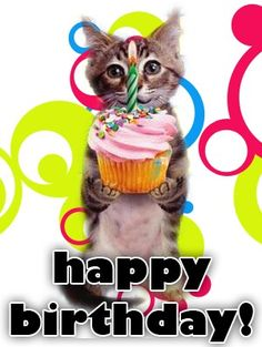 Happy Birthday Words Greetings Cat Wishes To Us