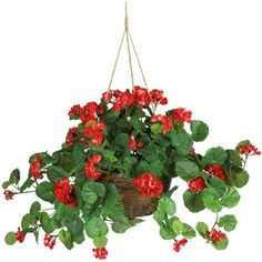 36 Geranium Hanging Basket Silk Plant