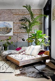 Los 25 rincones con plantas de interior más bellos de Pinterest                                                                                                                                                                                 Más