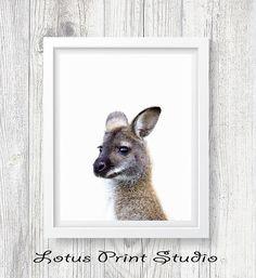 Kangaroo Print Baby Animal Wall Art Digital Download