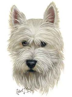 Wooden Dog Buttons Westie West Highland Terrier Jumper Cardigan Craft Boy Girl