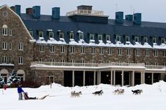 With the picturesque Skytop Lodge as your background, hop aboard your sleigh for a dog sled ride with dogs who have run the Iditarod!