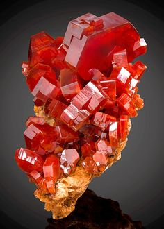 Vanadinite is one of the most striking minerals, with its stunning bright-red and orange crystals from - Mibladen Mining -Tafilalet Region, Morocco Credit: ExceptionalMinerals. Orange Crystals, Natural Crystals, Stones And Crystals, Gem Stones, Story Stones, Minerals And Gemstones, Rocks And Minerals, Beautiful Rocks, Mineral Stone