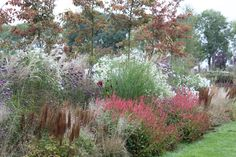 """Border in the"""" gardens of Appeltern"""". One of the best gardenparcs in Europe. Worth of a visit !"""