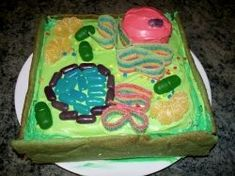 3D Plant Cell Cakes. Theirs learn mitocondria & vacuole when it's in candy.