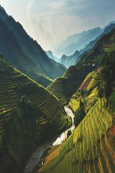ikwt:  northwestern mountains (tran van) |ikwt|instagram