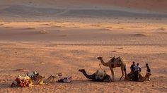 Wadi Rum Protected Area (Jordan)