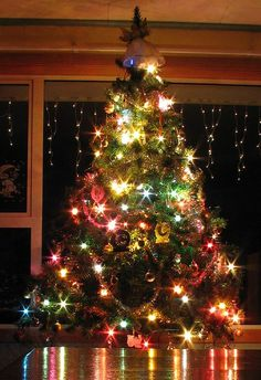 pretty lights on a beautiful Christmas tree Christmas Scenes, Noel Christmas, All Things Christmas, Winter Christmas, Christmas Lights, Christmas Photos, Christmas Tree Colored Lights, Christmas Christmas, Winter Holidays