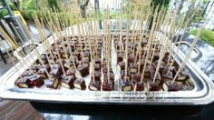 Delicious finger food by Istanbul Gourmet Catering!
