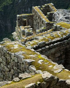Creative Tips to Help Strengthen Your Travel Photography | explora - 5) Cropping Everyone takes the same pictures at Machu Picchu, trying to get the whole site into one shot. But in this shot, I focused on a smaller section to show how green and graphic the stone work and architecture of the Incas was.- By Jessica Sample. ... http://scotfin.com/ says, And a good (focused) idea it was.