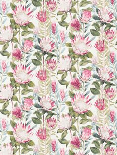 Buy King Protea in Rhodera / Cream, a feature wallpaper from Sanderson, featured in the The Glasshouse collection from Fashion Wallpaper. Watercolor Wallpaper, Flower Wallpaper, Watercolour, Protea Art, Protea Flower, William Morris Patterns, King Protea, Papel Scrapbook, Feature Wallpaper