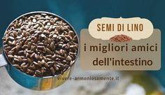 I semi di lino sono ricchi di fibre e sono un lassativo naturale contro l'intestino pigro e la stitichezza. Tra le proprietà c'è l'alto contenuto di Omega 3